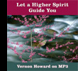 MP3 Let a Higher Spirit Guide You